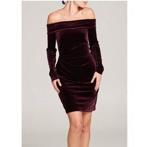 Eliza J Velvet Dress, New